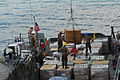 US Navy 100204-N-7918H-212 Boatswain's mates aboard the amphibious dock landing ship USS Ashland (LSD 48), load pallets of relief supplies onto Landing Craft Utility (LCU) 1664 for delivery to Haiti.jpg
