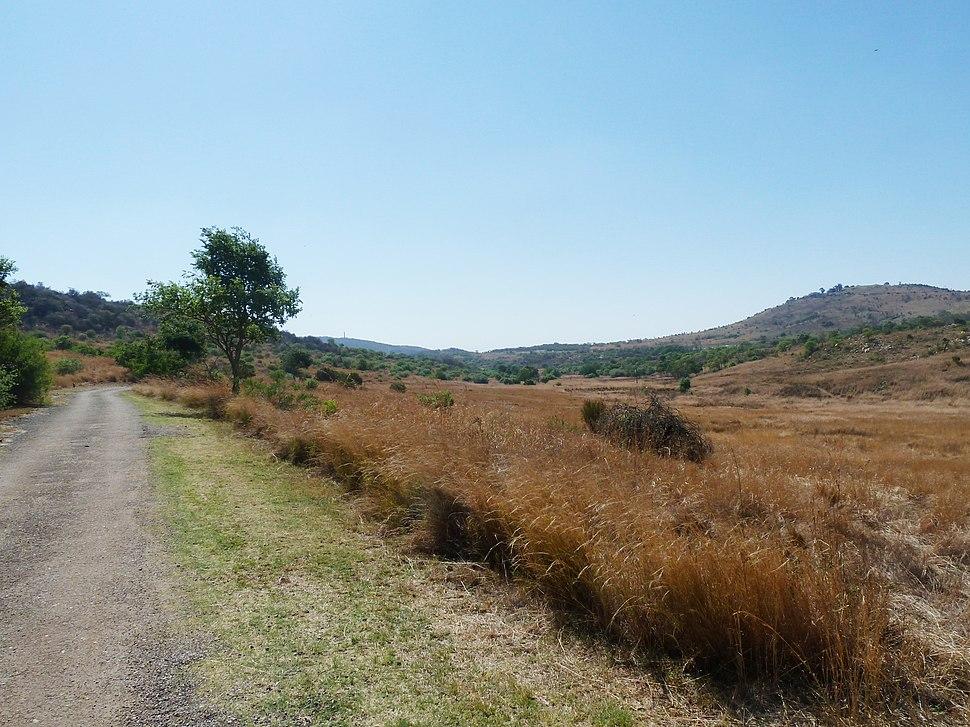 Uitsig oor Groenkloof Natuurreservaat