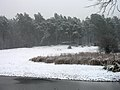 Ukraine Irpen 2010. First snow. By the river Irpen. Grotto.jpg
