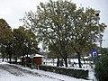 Ulika 21 12 09 sneeuw-Schnee-snow - panoramio - istra1977 (19).jpg