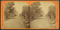 Union park, from Robert N. Dennis collection of stereoscopic views.png