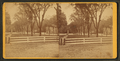 University grounds, from Robert N. Dennis collection of stereoscopic views.png