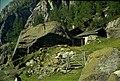 Untersulzbachtal 1965 Ascham Alm.jpg
