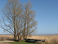 Usedom Achterwasser.jpg