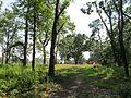 Van Horn Park, Springfield MA.jpg