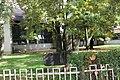 Varošica Medveđa 41.jpg