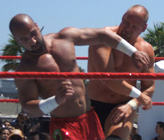 Shawn Daivari - Daivari wrestling with Val Venis