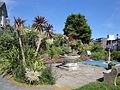 Ventnor Spring Hill Garden 2.JPG
