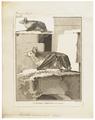 Vespertilio maximus - 1700-1880 - Print - Iconographia Zoologica - Special Collections University of Amsterdam - UBA01 IZ20800187.tif