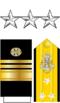 Vicadmiralo O9.png