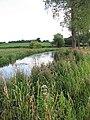 View downstream the River Wensum - geograph.org.uk - 894022.jpg