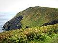 View from Dinas Island coast path - geograph.org.uk - 533785.jpg