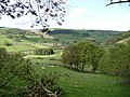 View over part of the Ceiriog Valley - geograph.org.uk - 1864271.jpg