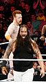 WWE 2014-04-07 19-30-18 NEX-6 0892 DxO (13952536743).jpg