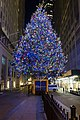 Wall Street Christmas Tree (31674667176).jpg