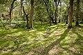 Warwickslade cutting, original stream bed - geograph.org.uk - 1546521.jpg
