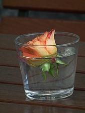 Wasserglas mit Rosenblüte.JPG
