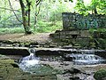 Weir by Brookfoot Mill, Horsforth - geograph.org.uk - 823790.jpg