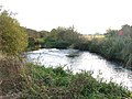 Weir on a tributary of the River Nene - geograph.org.uk - 1560957.jpg