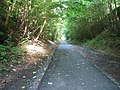 West Fife Cycleway at Comrie Dean - geograph.org.uk - 23313.jpg