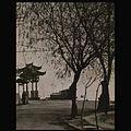 West Lake, Hangzhou, 1931, Shinzo Fukuhara 12.JPEG