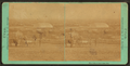 West side of Salt Lake City, by Savage, C. R. (Charles Roscoe), 1832-1909.png