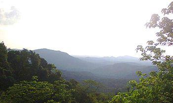 Western Ghat view.jpg