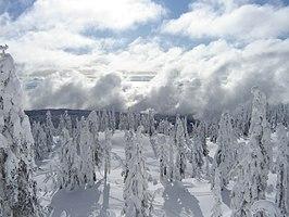 Cypress Provincial Park