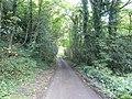 Whitefield Lane - geograph.org.uk - 562089.jpg