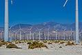 Wind Farm-4.jpg