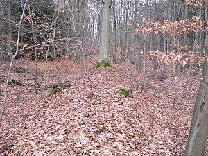 Landwehr (border) -  Middle Hessian Landheegen: embankment of the Innenheege near Wommelshausen (Bad Endbach