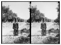 Woman, possibly Bedouin, holding spindle, standing in road LOC matpc.06351.jpg