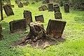 Worms juedischer Friedhof Heiliger Sand 035 (fcm).jpg