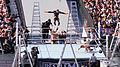 WrestleMania 31 2015-03-29 16-11-15 ILCE-6000 6199 DxO (17189330323).jpg