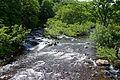 Yoppi River 02.jpg