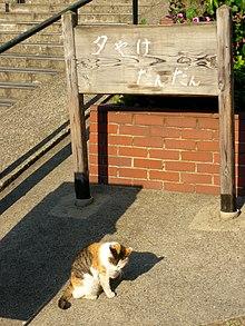 220px yuyake dandan yanaka taito tokyo 2009 apr