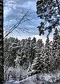 Zavolzhsky District, Ivanovo Oblast, Russia - panoramio - Andris Malygin (13).jpg