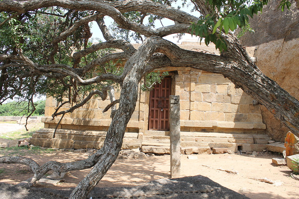 "File:""A holy tree in front of Rock Cut Siva Temple of Malayadipatti"".JPG"