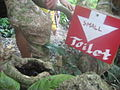 """Small Toilet"" at Mt. Luho Boracay, Philippines.jpg"
