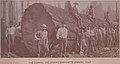 """""""The Fleming and Ayerst Company's logging camp"""" """"Photo by La Roche"""" before 1894 detail, from- Washington,the evergreen state, and Seattle its chief city; a souvenir for 1893-94- (IA washingtontheeve00pros) (page 13 crop).jpg"""