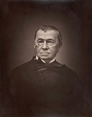 Émile de Girardin - Photograph of Girardin (1876)