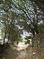 Διαδρομη απο την Λαγκαδα μεσο Θεολογου στον Σταυρο 04.jpg