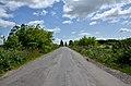 Автошлях C201513 ««Автошлях М-19 — Острів» - 19065591.jpg