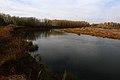 Вид на Урал вниз по течению - panoramio.jpg