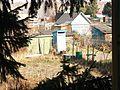 Вид сквозь еловые ветки - panoramio.jpg