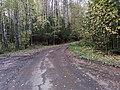 Дорога вдоль Гайвы 31.jpg