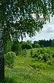 Дорога вдоль памятника природы регионального значения «Сурки».jpg