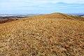 На Козьих горах. Вид в северном направлении - panoramio (1).jpg
