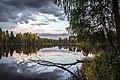 Нижне-Исинский пруд (Иван-Озеро) - panoramio (5).jpg