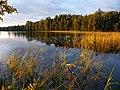 Озеро Лошамьё на закате.jpg